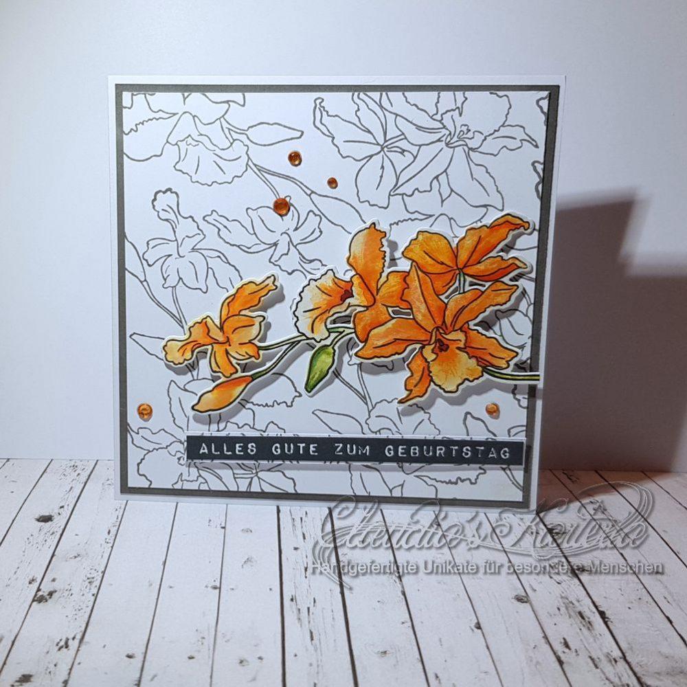 Cattleya auf Skizzen | Geburtstagskarte