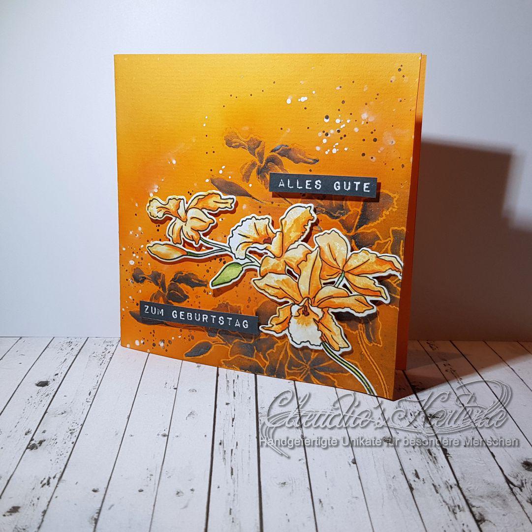 Cattleya auf Schattenorchidee | Geburtstagskarte