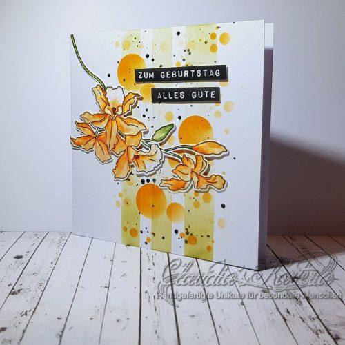 Cattleya auf Bokeh-Streifen | Geburtstagskarte