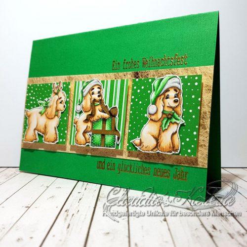 Spaniel voller Vorfreude auf grün | Weihnachtskarte