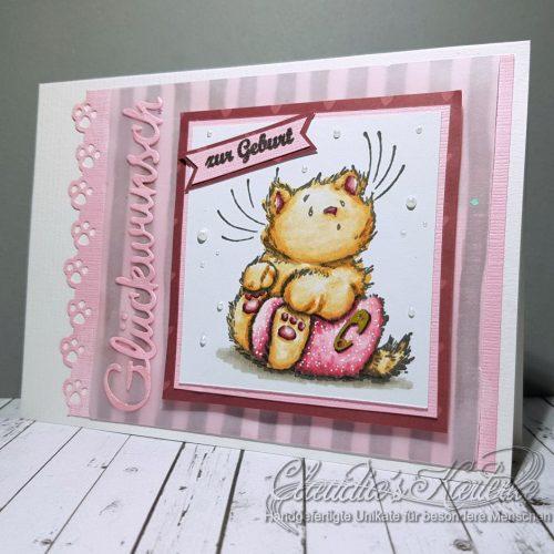 Baby-Kitten auf Vintage-Pink | Geburtskarte